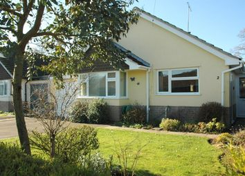 Thumbnail 3 bedroom detached bungalow for sale in East Melbury, Shaftesbury
