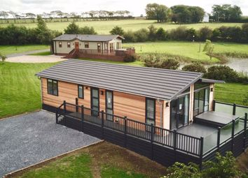 Thumbnail 3 bed property for sale in Llanon