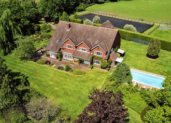 Thumbnail 5 bed detached house for sale in Yarmouth Road, Stalham, Norwich