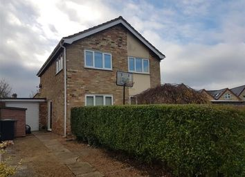 Thumbnail 3 bed detached house to rent in Strollers Way, Stetchworth, Newmarket