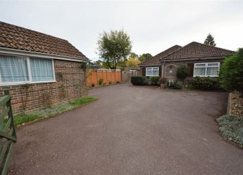 Thumbnail 4 bed detached bungalow for sale in Anmore Road, Denmead, Waterlooville