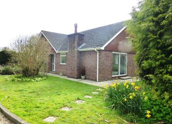 Thumbnail 3 bed bungalow to rent in Drayton Lane, Drayton, Chichester