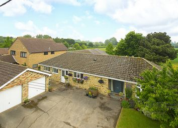 Thumbnail 5 bed detached bungalow for sale in Colne Road, Somersham, Huntingdon, Cambridgeshire