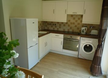 Thumbnail 1 bed end terrace house to rent in Path Link, Crawley