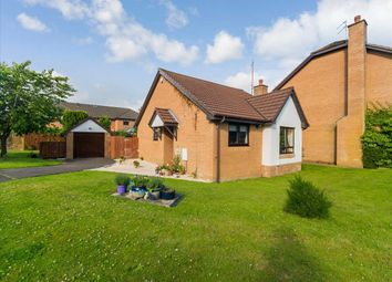 Thumbnail 2 bed bungalow for sale in Braidpark Drive, Giffnock, Glasgow