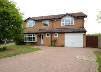 Thumbnail 5 bedroom detached house to rent in Witcham Close, Lower Earley, Reading