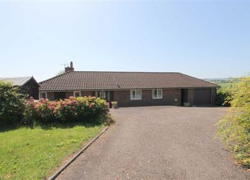 Thumbnail 2 bed detached bungalow for sale in Three Ashes, Hereford