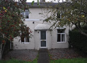 Thumbnail 4 bed terraced house to rent in Glen View, Penryn