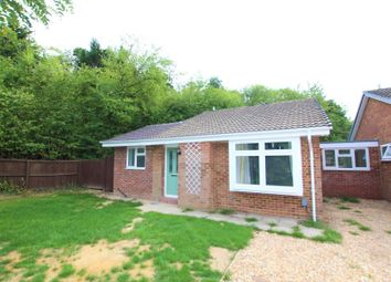 Thumbnail 3 bed detached bungalow to rent in Horsell, Woking