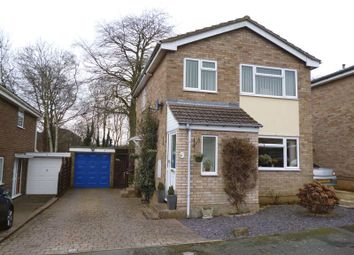 Thumbnail 3 bed detached house to rent in Coppice Close, Daventry