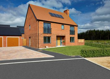 Thumbnail 4 bed detached house for sale in Sword Close, Matchams, Ringwood