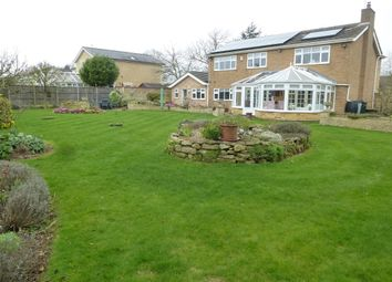 Thumbnail 4 bed detached house for sale in Empingham Road, Stamford