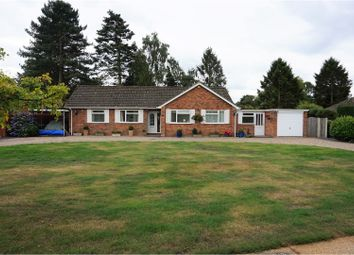 Thumbnail 4 bed bungalow for sale in Summer Drive, Norwich