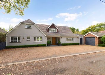Thumbnail 5 bed detached bungalow for sale in Cranleigh Road, Ewhurst, Cranleigh