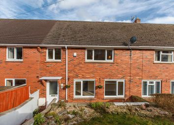 Thumbnail 3 bed terraced house for sale in Spruce Park, Crediton