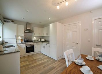 Thumbnail 3 bed semi-detached house for sale in Primula Crescent, Clitheroe