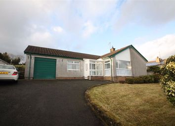 Thumbnail 4 bed detached bungalow to rent in Carlisle Park, Ballynahinch, Down