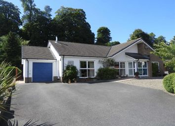 Thumbnail 3 bed detached bungalow for sale in Glanarberth, Llechryd, Cardigan