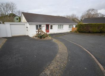 Thumbnail 3 bed bungalow for sale in Pine Grove, Llanarth