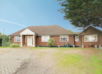 Thumbnail 4 bed detached bungalow for sale in Old House Lane, Roydon, Harlow