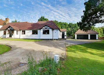 4 bed semi-detached bungalow for sale in Motts Green, Little Hallingbury, Bishop's Stortford, Herts CM22