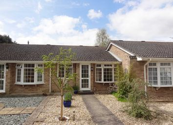 Thumbnail 2 bed bungalow to rent in Johnstone Road, Christchurch