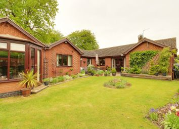 Thumbnail 5 bed detached bungalow for sale in King Edward Street, Belton, Doncaster