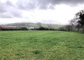 Thumbnail Equestrian property for sale in Chilthorne Domer, Yeovil, Somerset