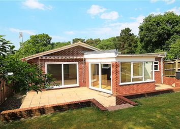 Thumbnail 2 bed detached bungalow for sale in Lower Parkstone, Poole, Dorset