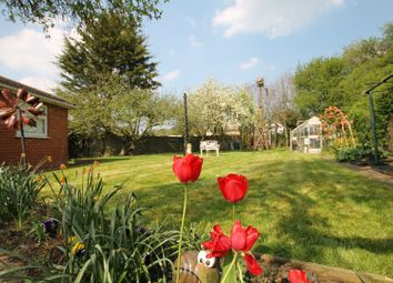Thumbnail 4 bed semi-detached bungalow for sale in Willow Close, Hornchurch