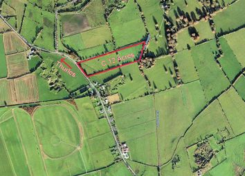 Thumbnail Property for sale in Lanespark, Ballynonty, Thurles, Tipperary