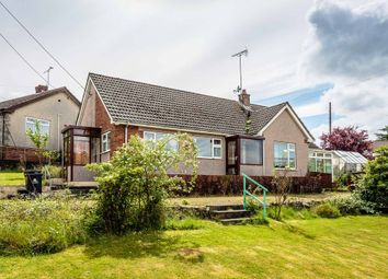Thumbnail 3 bed detached bungalow for sale in High Beech Road, Bream, Lydney