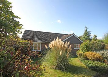 Thumbnail 3 bed detached bungalow for sale in Treetops, Oaklands, South Godstone, Godstone