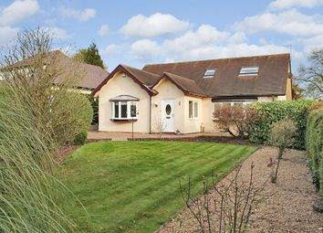 Thumbnail 4 bed property for sale in Croft Lane, Diss, Norfolk