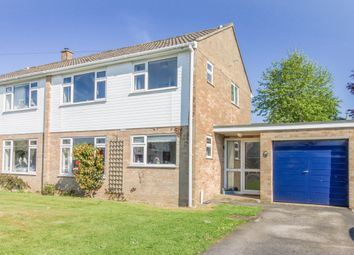 Thumbnail 4 bed semi-detached house for sale in Chilbolton, Stockbridge, Hampshire