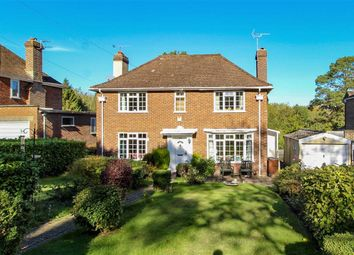 Thumbnail 3 bed detached house for sale in Westfield Lane, St Leonards-On-Sea, East Sussex