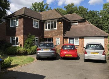 Thumbnail 4 bed detached house to rent in Blackwood Close, West Byfleet, Surrey
