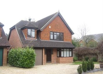 Thumbnail 4 bedroom detached house to rent in Steggles Close, Woodley, Reading