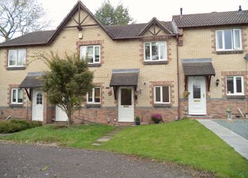 Thumbnail 2 bed semi-detached house to rent in Periwinkle Close, Swindon