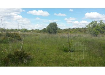 Thumbnail Land for sale in Guia, Guia, Albufeira