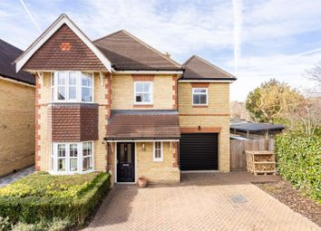 Nancy Edwards Place, Chelmsford CM1. 5 bed property for sale