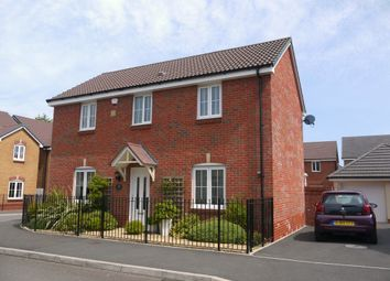 Thumbnail 4 bedroom detached house to rent in Bryn Derwen, Sketty, Swansea