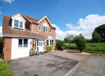 Thumbnail 5 bed detached house to rent in Paxmans Road, Westbury