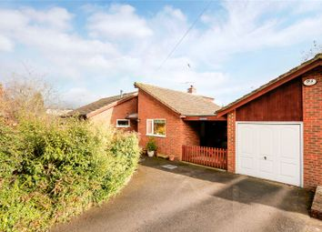 Thumbnail 3 bed detached bungalow for sale in Donkey Lane, Tring, Hertfordshire
