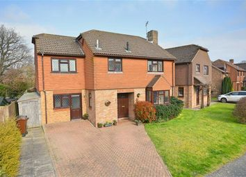 Thumbnail 5 bed detached house for sale in Sycamore Drive, Hailsham