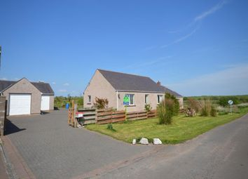 Thumbnail 4 bed bungalow for sale in Aig Na Taigh, Ruthwell, Dumfries