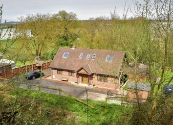 Thumbnail 4 bed detached house for sale in Rotherwas, Hereford