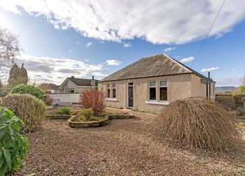 Thumbnail 3 bed detached bungalow for sale in Westlea, Perth Road, Abernethy, Perth