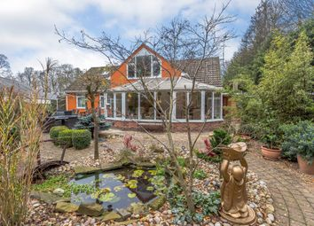 Thumbnail 5 bed property for sale in The Park, Great Barton, Bury St Edmunds