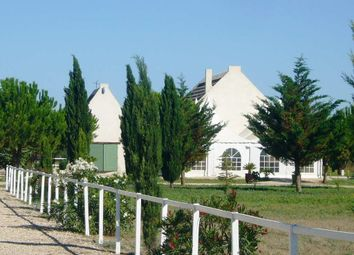Thumbnail Property for sale in Aigues Mortes, Gard, France